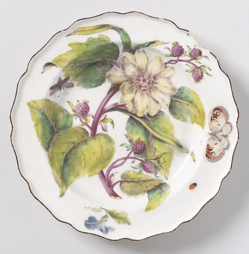 A plate with wavy, brown-edged rim painted with a large spray of sunflower (Helianthus atrorubens), showing a blossom, buds, and leaves, with various insects. Date: 1750s. Record ID: chndm_1957-11-13.