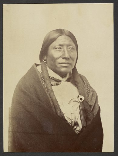 Cheyenne Chief Whirlwind. Date: 1869–1874. Culture: American. Object number: 84.XM.192.19.