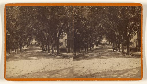 State St, Hothrook, Conn? Date: 1870s. Culture: American. Object number: 84.XC.873.8983.