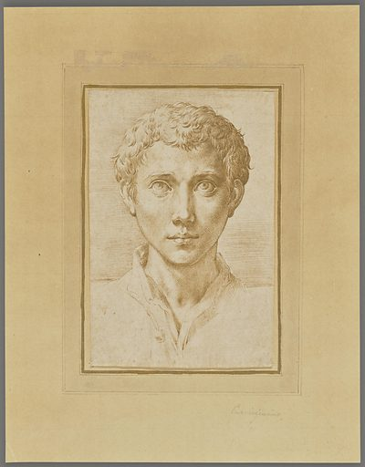 The head of a Young Man. Date: about 1539–1540. Culture: Italian. Object number: 2017.79.