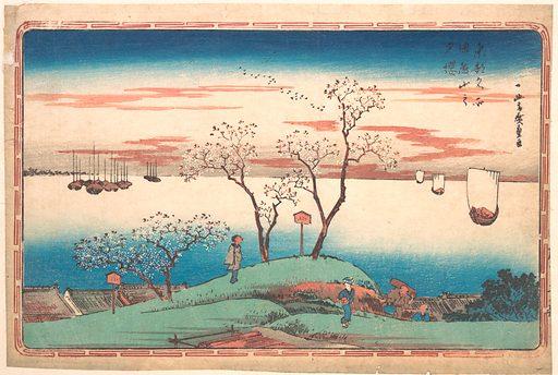 Evening Cherry Blossoms at Gotenyama
