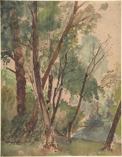 Trees Beside a Pond (1853–1878). Accession number: 1995.145.