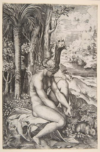 Venus removing a thorn from her left foot while seated on a cloth next to trees, a hare lower right (ca. 1515–27). Accession number: 1986.1180.213.