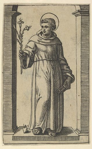 Saint Anthony of Padua standing, lillies in his raised right hand, a book in his left, from the series 'Piccoli Santi' (Small Saints) (ca 1500–1527). Accession number: 49.97.49.