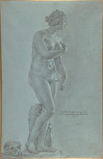 Venus de' Medici; view from the front (1640). Accession number: 64.197.8.