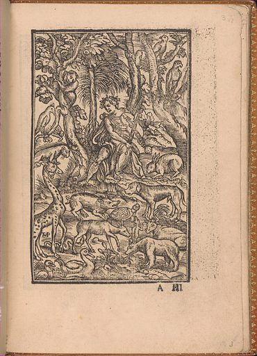 Convivio delle Belle Donne (August 1532). Published in Venice, Italy. Accession number: 22.66.6(1-43).