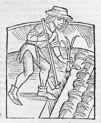 II) Der Ritter vom Turm, von den exenplen der Gotzfurcht und erberkeit. (1499, 1512, 1513). Printed I) Strassburg: Hans Grüninger 5 March 1499, Germany. Accession number: 26.100.2.