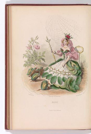 Les Fleurs Animées (1867). Published in Paris, France. Accession number: 1970.565.423.1–.2.