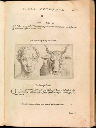 De Humana Physiognomonia. Libri III (1586). Accession number: 37.36.2.