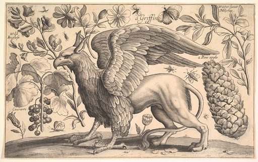 A Griffin (1625–77). Accession number: 2002.482.9.