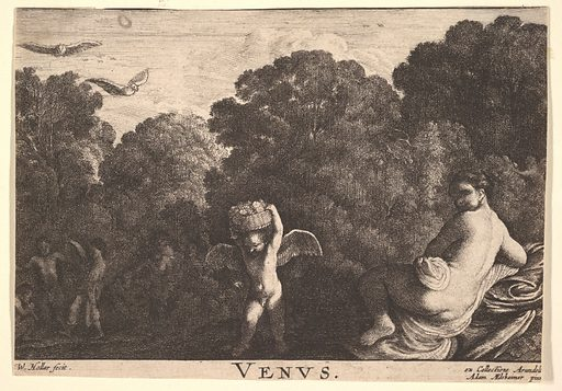 Realm of Venus, after Adam Elsheimer (1625–77). Accession number: 17.50.18-151.