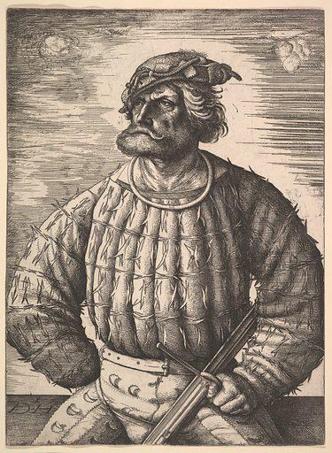 Portrait of Kunz  von der Rosen (ca. 1515/1518). Accession number: 24.68.1.
