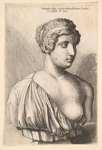 Antique bust of a woman (1645). Accession number: 17.50.18-139.