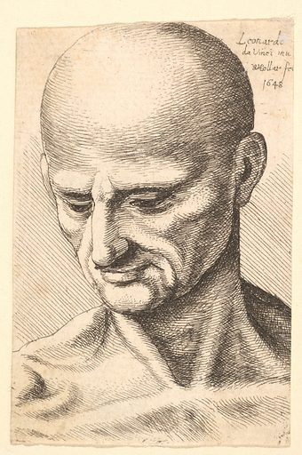 Head of a bald, sinewy man looking downwards (1648). Accession number: 17.50.18-256.