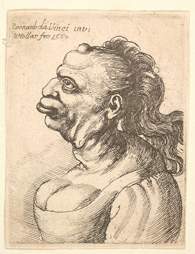 Bust of a woman wearing low-cut dress, with protruding lipd, growth on her forehead, prominent breast,  long flowing hair down her back, in profile to left. (1660). Accession number: 17.50.18-267.