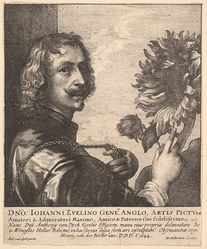 Sir Anthony van Dyck with a sunflower (1644). Accession number: 17.50.86.
