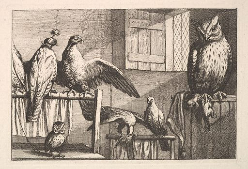 Hawks and owls (1625–77). Accession number: 23.59.45.