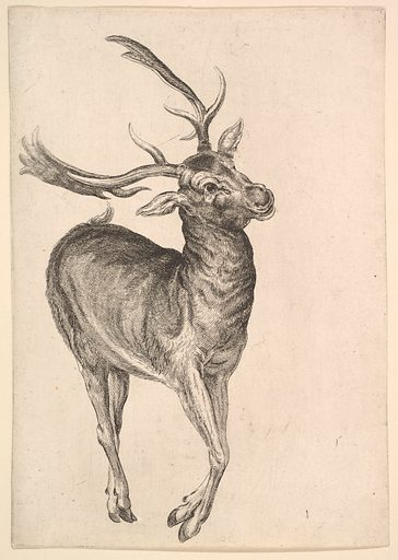 Stag (1625–77). Accession number: 26.72.113.