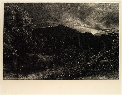 The Weary Ploughman, or The Herdsman, or Tardus Bubulcus (begun 1858). Accession number: 17.3.2404.