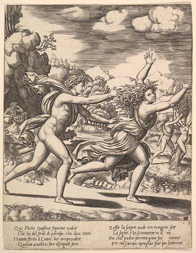 Apollo chasing Daphne who throws her arms up, in the background at right shows the moment she turns in a laurel, from The Story of Apollo and Daphne (1530–60). Accession number: 49.97.325.