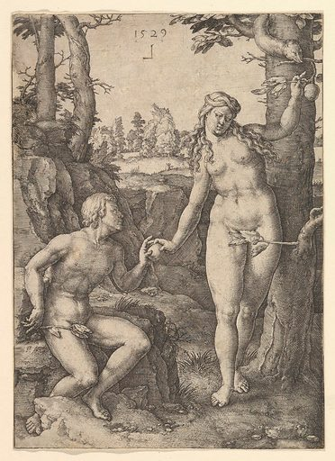 Fall of Man (1529). Accession number: 57.531.12.