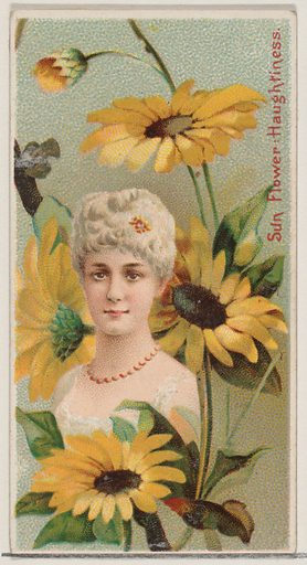 Sunflower: Haughtiness, from the series Floral Beauties and Language of Flowers for Duke brand cigarettes