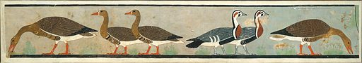 Facsimile Painting of Geese, Tomb of Nefermaat and Itet. Date: ca 2575–2551B. C, Original: Old Kingdom, Dynasty 4, reign of Snefru. Original from Memphite Region, Egypt. Accession number: 3168.