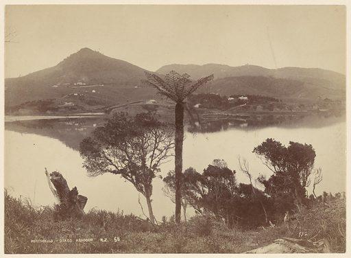Portobello. Otago Harbor, NZ. Date: ca 1885. Collection: Views of Australia and New Zealand. Image ID: 57395535.