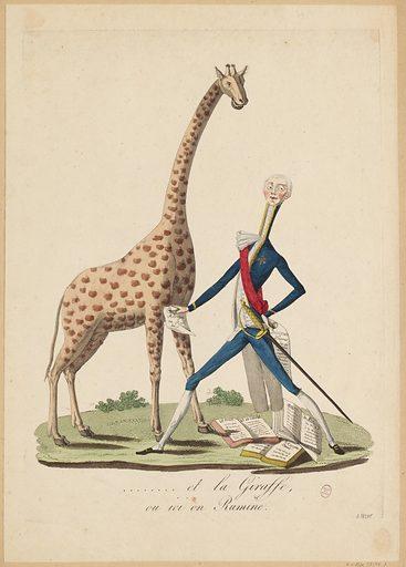 And the Giraffe, or here we Rumine