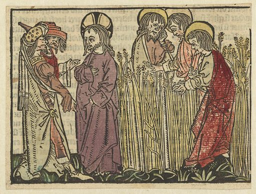 The disciples pluck and eat spikes on the Sabbath. Origin: Low Countries. Date: 1485 – 1491. Object ID: RP-P-1961-721.