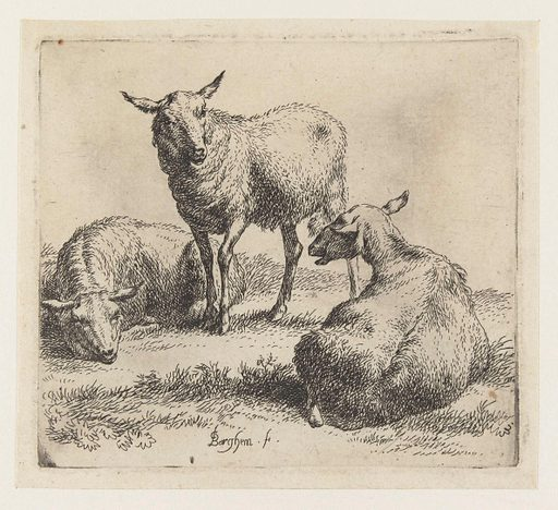 Three sheep. Origin: Netherlands. Date: 1646 – 1652. Object ID: RP-P-BI-982.