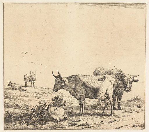 The cow, the bull and the calf. Date: 1650 – 1660. Object ID: RP-P-1885-A-9584.