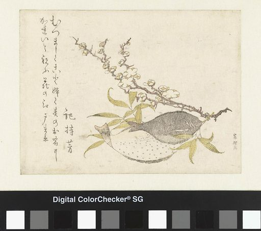 Two fishes and a plum blossom branch. Origin: Japan. Date: c 1790 – c 1800. Object ID: AK-MAK-976.