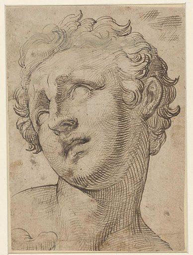Head of a son of Laocoön. Date: 1539 – 1592. Object ID: RP-T-00-3763.