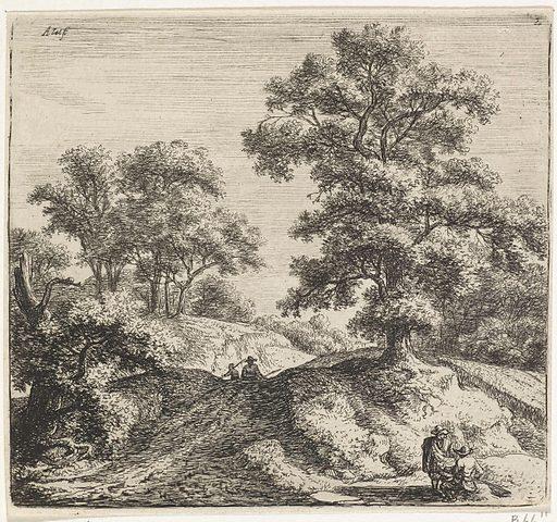 Large oak tree next to a path
