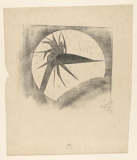 Withered strelitzia. Date: 1934. Object ID: RP-P-1946-48.