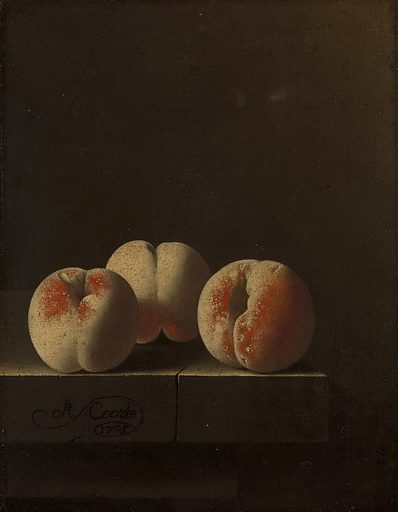 Coorte portrayed fruit with the precision of a scientist. By isolating it, it is as if he wanted to get to the very essence of a peach or a gooseberry. Although these four paintings were not conceived as a series, they have formed an ensemble since the second half of the 18th century. Date: 1705. Object ID: SK-C-1690.