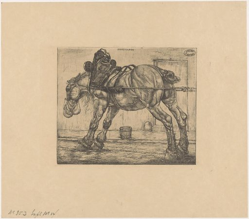 Draft horse with oat bag. Origin: Paris. Date: 1900. Object ID: RP-P-2016-2134.