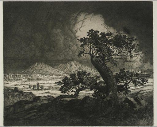 Old Cedars and Spanish Peaks. Date: 1920s. Record ID: saam_1983.83.11.