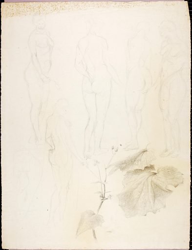 Nudes and Leaf. Date: 1920s. Record ID: saam_1971.446.62.