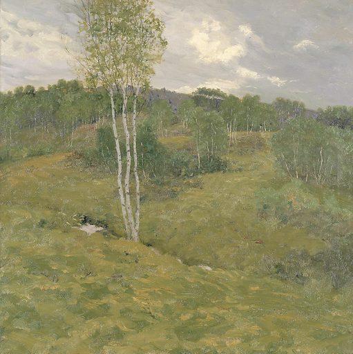 Birch-Clad Hills. Date: 1900s. Record ID: saam_1909.7.23.