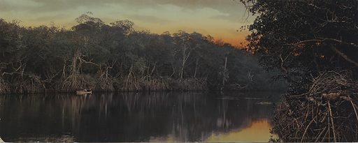 Florida, Sunset on the Ocklawaha. Date: 1890s. Record ID: saam_2004.29.44.