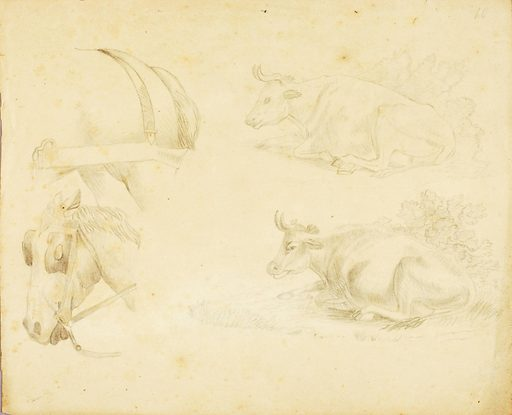 Studies – 2 cows, horse, etc. Date: 1810s. Record ID: saam_1973.183.2.