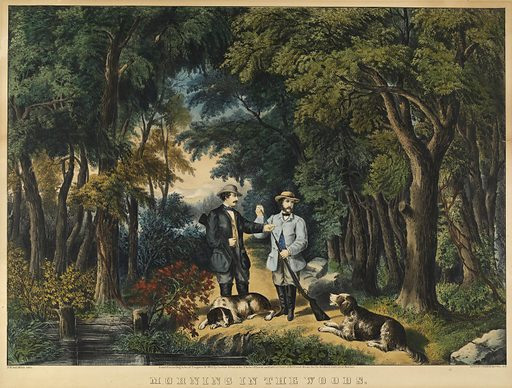 Morning in the Woods. Date: 1860s. Record ID: saam_1973.122.6.
