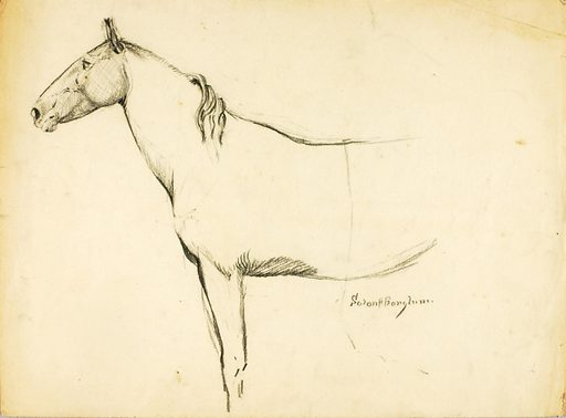 Horse. Date: 1920s. Record ID: saam_1971.446.175.