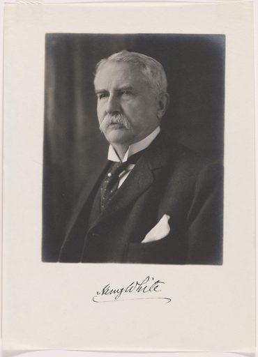 Henry White. Sitter: Henry White, 29 May 1850 – 15 Jul 1927. Date: 1920s. Record ID: npg_NPG.84.255.