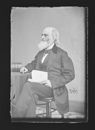 William Cullen Bryant. Sitter: William Cullen Bryant, 3 Nov 1794 – 12 Jun 1878. Date: 1860s. Record ID: npg_NPG.81.M487.