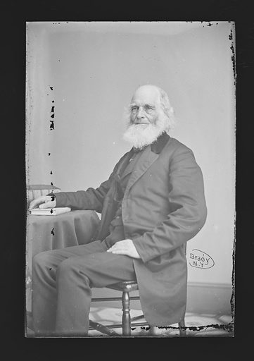 William Cullen Bryant. Sitter: William Cullen Bryant, 3 Nov 1794 – 12 Jun 1878. Date: 1860s. Record ID: npg_NPG.81.M491.