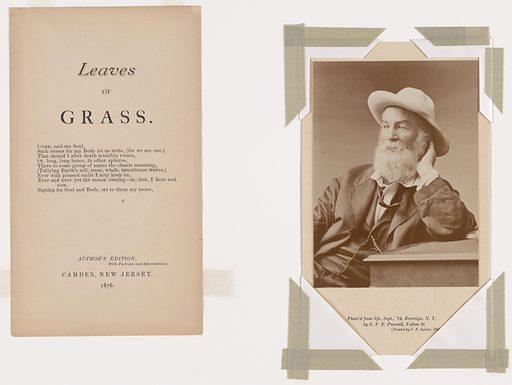 Walt Whitman. Sitter: Walt Whitman, 31 May 1819 – 26 Mar 1892. Date: 1870s. Record ID: npg_S_NPG.76.51.
