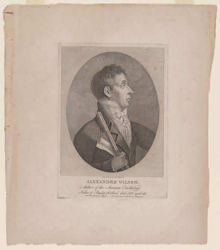 Alexander Wilson. Sitter: Alexander Wilson, 6 Jul 1766 – 23 Aug 1813. Date: 1810s. Record ID: npg_NPG.85.34.